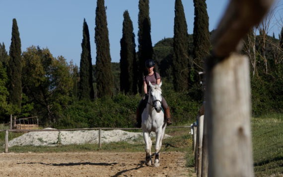 Discover the Maremma on <em>horseback</em>